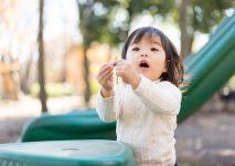 児童発達支援を利用するまでの手順まとめ